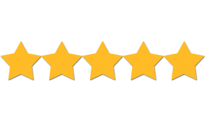 5 Star Rating Clear Bra INstallers